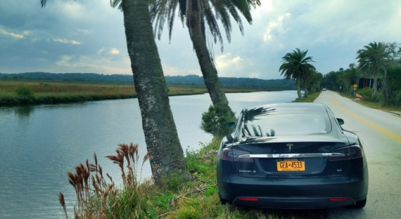 Tips For a Successful Family Road Trip Through Florida