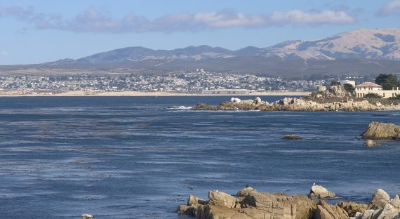 Monterey, the quaint beauty amidst modernity
