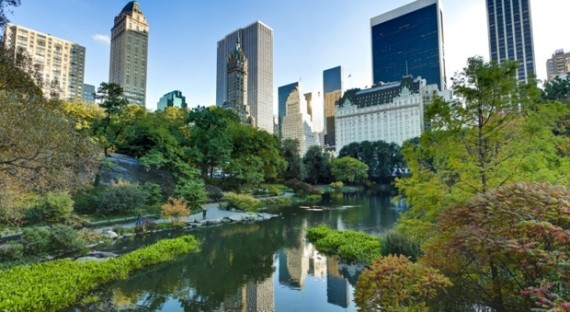 How to do New York in summer